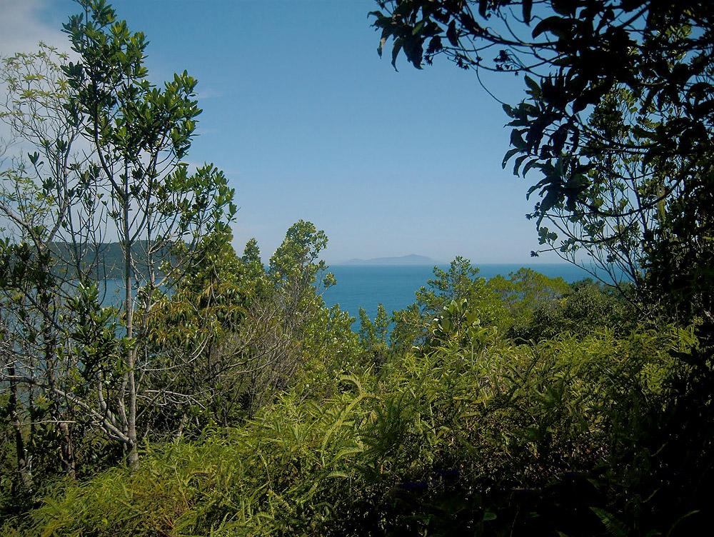 Praia do Cedro - Ubatuba - por valteraragão-