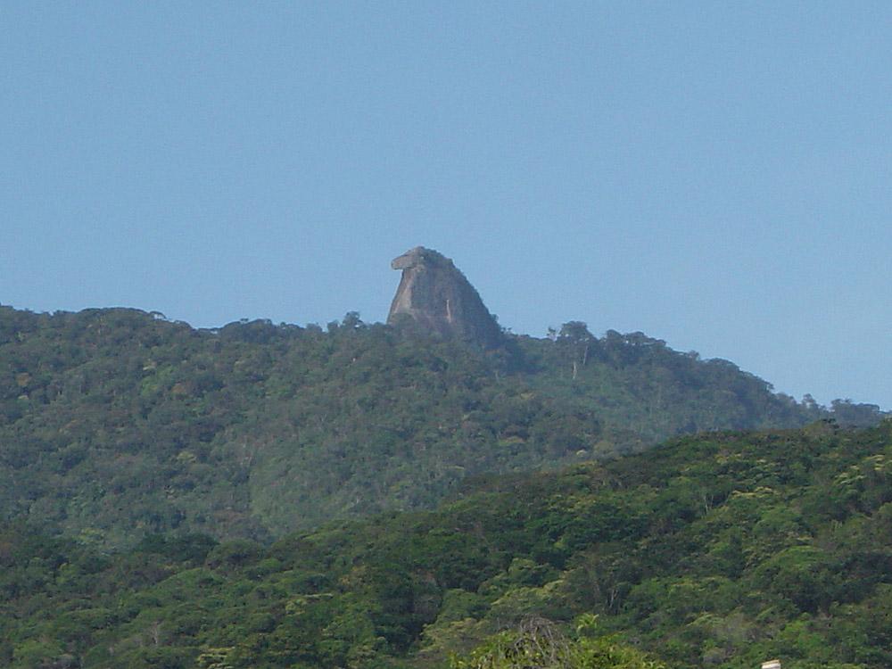 Ilha Grande - Rio de Janeiro - por wikipedia