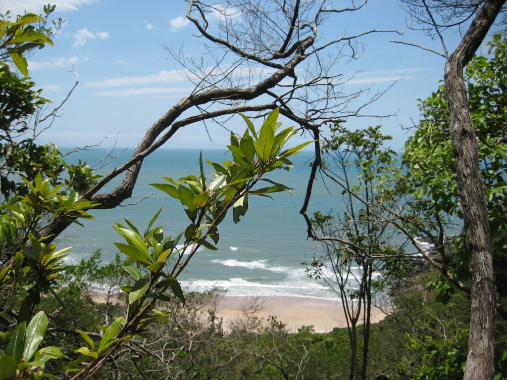 praia-brava-florianopolis-por-nicepicture