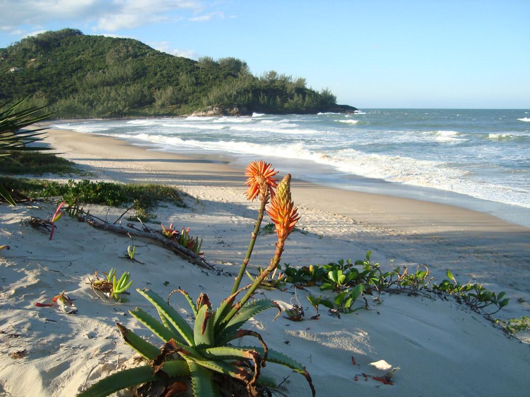 Praia da Ferrugem – Garopaba - por feriaspelobrasil-com-br