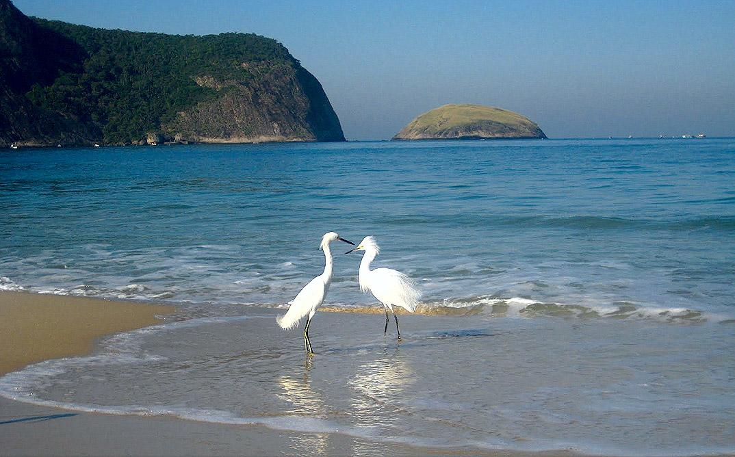 Praia de Camboinhas - Niterói - por Laura
