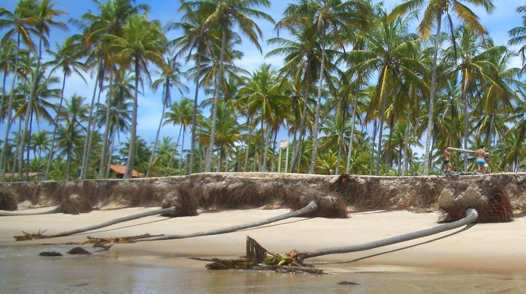 praias de belmonte bahia - por daniele-pezzoni