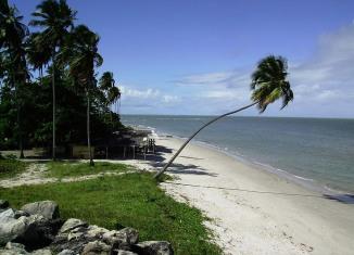Praia de Itamaracá(Ilha de Itamaracá) - Goiana - Pernambuco - por maxionibusolinda