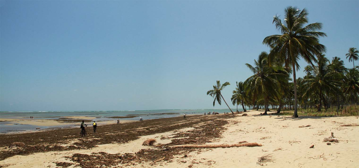 Praias de São Jose da Coroa Grande - por Edmir-Silvestre