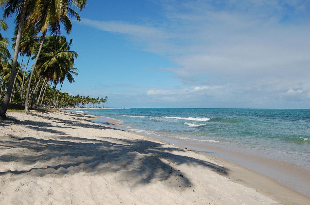 Praias de Tamandaré - Pernambuco - por Marcos-Frandoloso