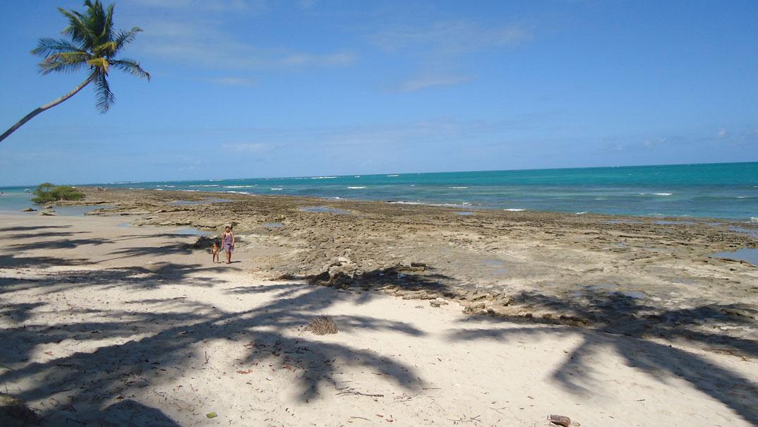 Praias de Tamandaré - Pernambuco - por liselpix