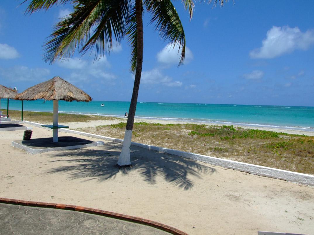 Praia de Tamandaré - Tamandaré - Pernambuco - por FCarvalheira