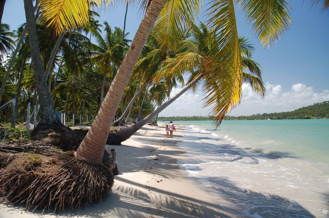Praia dos Carneiros - Tamandaré - Pernambuco - por Mauricio-F-Pinho