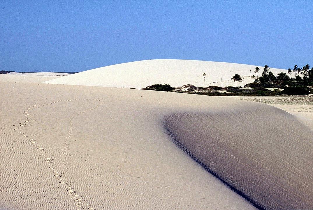 Praia de Jericoacoara - Ceará - por Dominique-Hazard