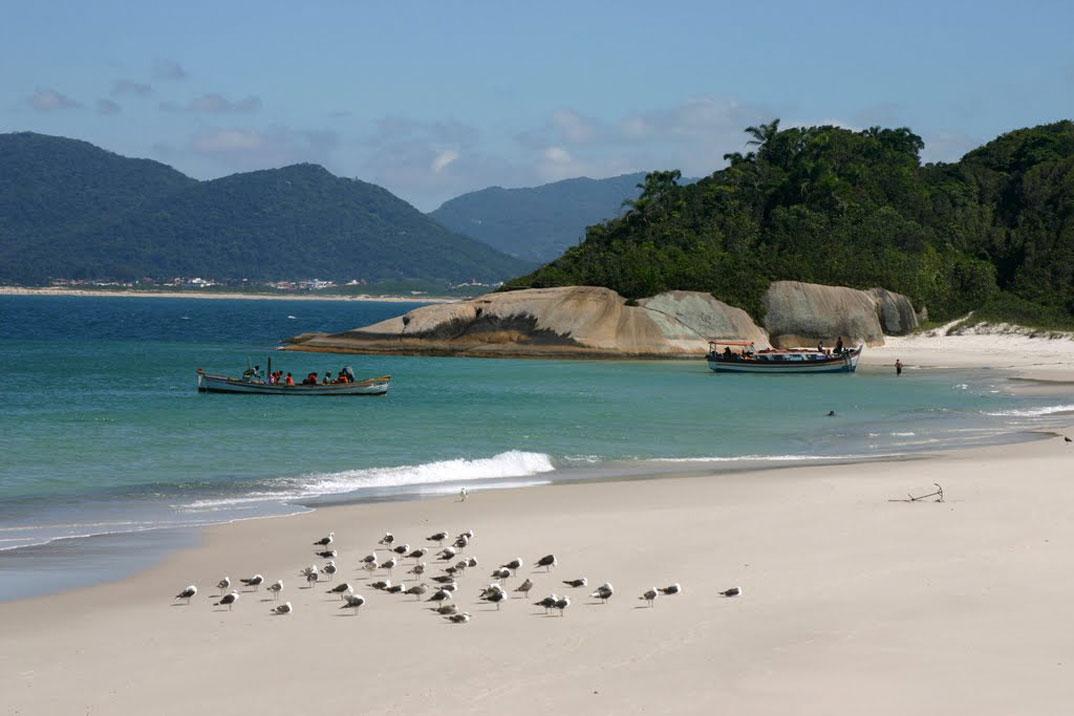 Ilha do Campeche - SC - por Ivan-Linhares-Martins